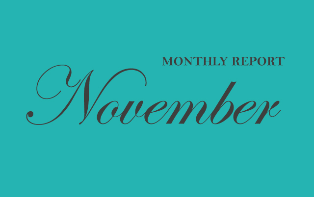 Monthly Report – NOVEMBER