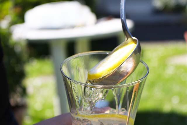 Simple White Tonic – Mein idealer Sommerdrink