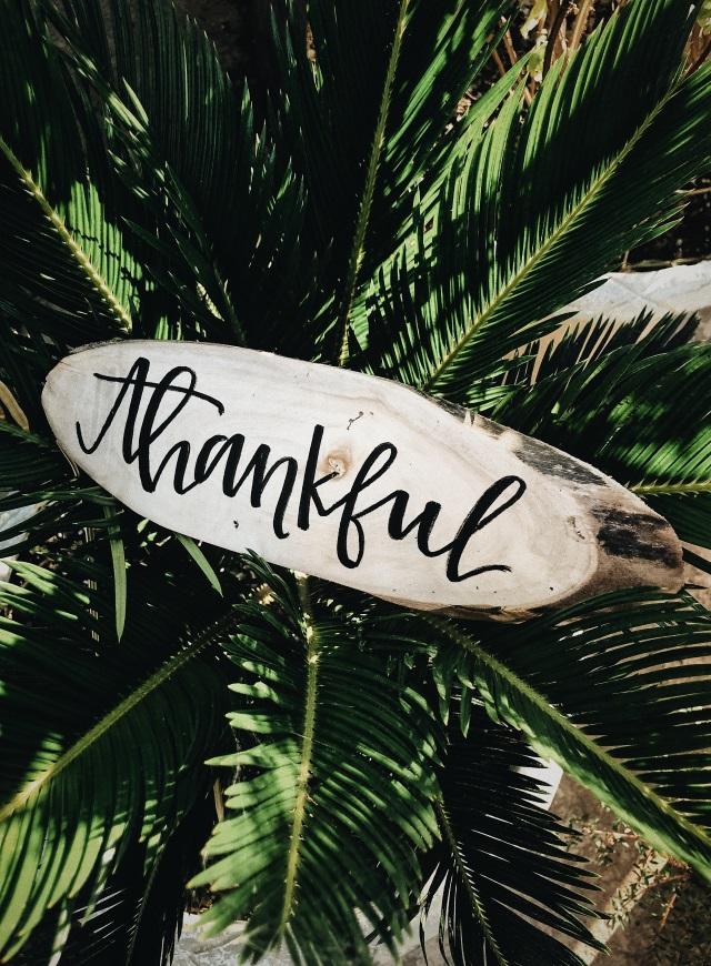Dankbarkeit – So ziehst du Gutes in dein Leben