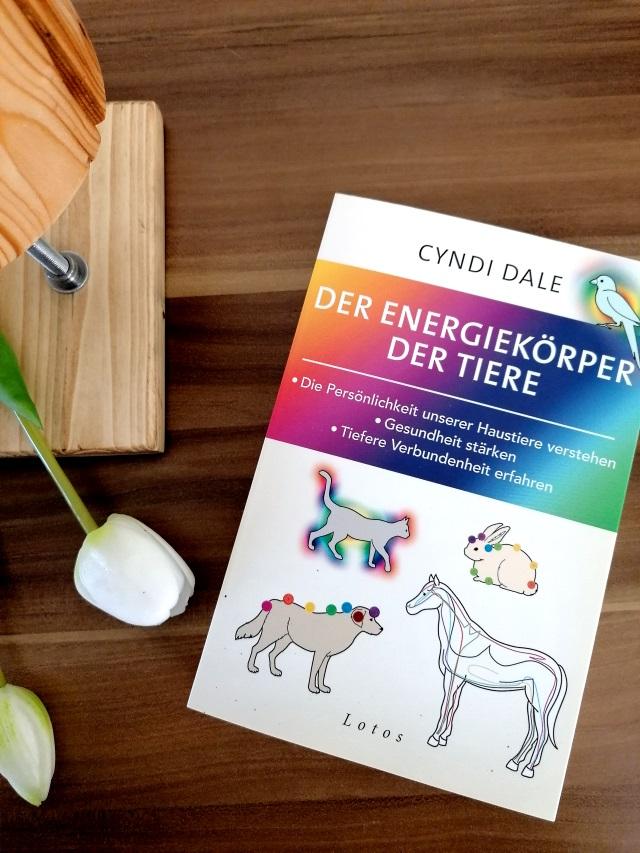 Energiearbeit – Bücher von Cyndi Dale